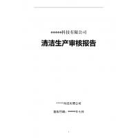 清洁生产审核报告