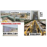 硫自养反硝化(SAD)