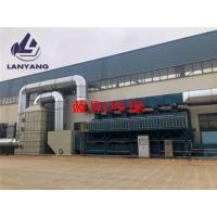废气处理设备 活性炭催化燃烧装置 蓝阳环保废气治理